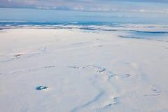 Χειμερινό tundra άνωθεν στοκ εικόνες με δικαίωμα ελεύθερης χρήσης