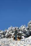 Χειμερινό Vista Νέων Μεξικό στοκ εικόνες