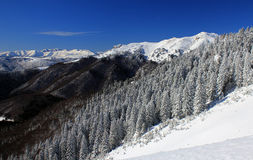 Χειμερινά βουνά Στοκ εικόνες με δικαίωμα ελεύθερης χρήσης