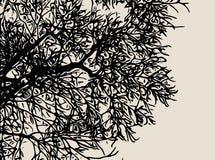 χειμώνας δέντρων εικόνας σχεδίου Στοκ Εικόνες