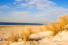 χειμώνας ακτών πρωινού Στοκ εικόνες με δικαίωμα ελεύθερης χρήσης