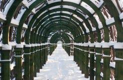 χειμώνας αλεών arhangelskoe Στοκ Εικόνες