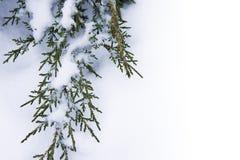 χειμώνας ανασκόπησης τέχνη&s Στοκ εικόνα με δικαίωμα ελεύθερης χρήσης
