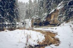Χειμώνας από τον ποταμό Στοκ Εικόνες