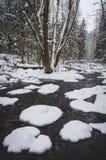 Χειμώνας από τον ποταμό Στοκ φωτογραφία με δικαίωμα ελεύθερης χρήσης