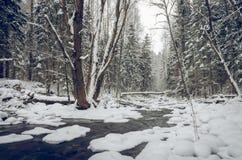Χειμώνας από τον ποταμό Στοκ Φωτογραφίες