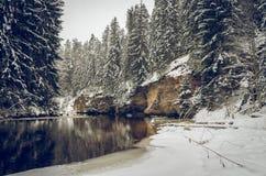 Χειμώνας από τον ποταμό Στοκ εικόνες με δικαίωμα ελεύθερης χρήσης