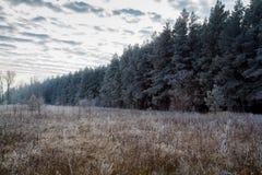 χειμώνας αρχής Στοκ εικόνα με δικαίωμα ελεύθερης χρήσης