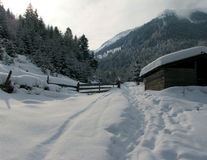 χειμώνας βάθους Στοκ φωτογραφία με δικαίωμα ελεύθερης χρήσης