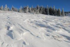 χειμώνας βουνοπλαγιών Στοκ φωτογραφία με δικαίωμα ελεύθερης χρήσης