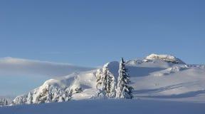 χειμώνας βουνών τοπίων στοκ εικόνες