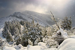 χειμώνας βουνών στοκ φωτογραφία με δικαίωμα ελεύθερης χρήσης