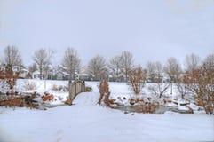 χειμώνας γεφυρών Στοκ Εικόνες