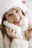 χειμώνας γουνών Στοκ φωτογραφία με δικαίωμα ελεύθερης χρήσης