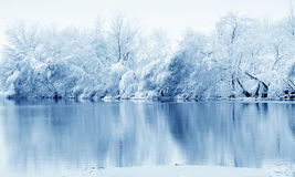 χειμώνας δέντρων ποταμών στοκ εικόνες