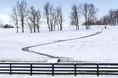 χειμώνας δέντρων σκηνής μονοπατιών χωρών Στοκ φωτογραφία με δικαίωμα ελεύθερης χρήσης