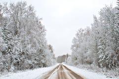 χειμώνας δασικών δρόμων Στοκ εικόνα με δικαίωμα ελεύθερης χρήσης