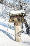 χειμώνας διακοσμήσεων π&omic Στοκ Εικόνες