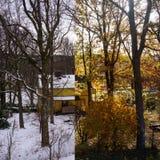 Χειμώνας εναντίον Autum Στοκ εικόνα με δικαίωμα ελεύθερης χρήσης