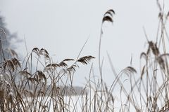 χειμώνας εποχής τοπίων ωρών Στοκ Φωτογραφία