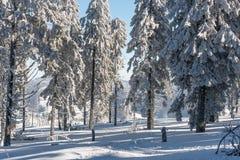 χειμώνας εποχής τοπίων ωρών Στοκ εικόνα με δικαίωμα ελεύθερης χρήσης