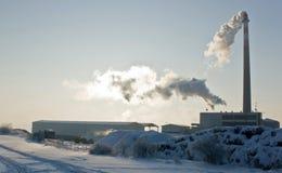 χειμώνας εργοστασίων Στοκ Εικόνες
