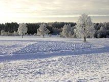 χειμώνας ηλιοβασιλέματος Στοκ φωτογραφία με δικαίωμα ελεύθερης χρήσης