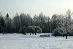 χειμώνας ημέρας Στοκ Εικόνες