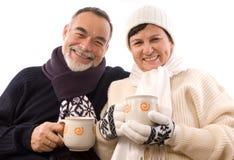χειμώνας θερέτρου Στοκ φωτογραφία με δικαίωμα ελεύθερης χρήσης