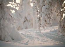 χειμώνας κινηματογραφήσ&epsil Στοκ φωτογραφία με δικαίωμα ελεύθερης χρήσης