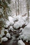 χειμώνας κολπίσκου Στοκ Εικόνες