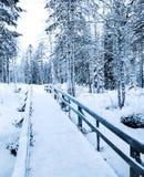 χειμώνας μονοπατιών Στοκ Φωτογραφίες