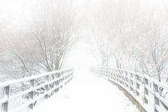 χειμώνας μονοπατιών στοκ εικόνες