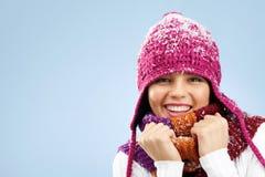 χειμώνας μόδας Στοκ Εικόνες