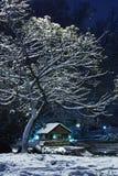 χειμώνας νύχτας Στοκ εικόνα με δικαίωμα ελεύθερης χρήσης
