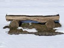χειμώνας ξυλείας χιονιού πάγκων Στοκ Εικόνες