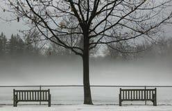 χειμώνας ομίχλης Στοκ Φωτογραφία