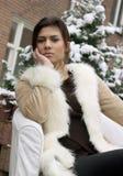 χειμώνας ομορφιάς Στοκ εικόνα με δικαίωμα ελεύθερης χρήσης