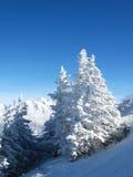 χειμώνας ορών Στοκ Εικόνες