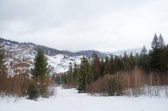 Χειμώνας ουκρανικά Carpathians Στοκ φωτογραφία με δικαίωμα ελεύθερης χρήσης