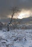 χειμώνας ουρανού Στοκ εικόνα με δικαίωμα ελεύθερης χρήσης