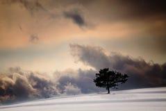χειμώνας ουρανού Στοκ Φωτογραφία