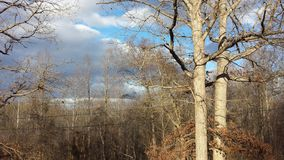 1 χειμώνας ουρανού στοκ εικόνες