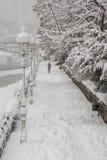χειμώνας οδικών χιονώδης δέντρων καμπυλών λεωφόρων Στοκ Φωτογραφίες