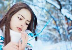 χειμώνας πάρκων κοριτσιών Στοκ Εικόνα
