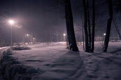 χειμώνας πάρκων νύχτας Στοκ εικόνες με δικαίωμα ελεύθερης χρήσης