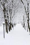 χειμώνας πάρκων παρόδων Στοκ Φωτογραφίες