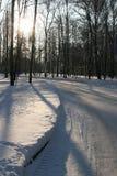 χειμώνας πάρκων στοκ εικόνα με δικαίωμα ελεύθερης χρήσης