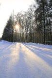 χειμώνας πάρκων στοκ φωτογραφίες