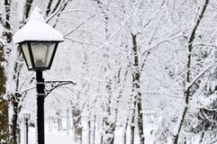 χειμώνας πάρκων Στοκ εικόνες με δικαίωμα ελεύθερης χρήσης